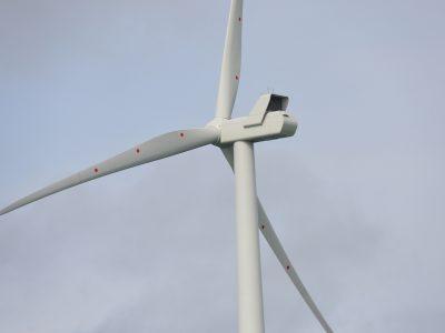 Rampion turbine