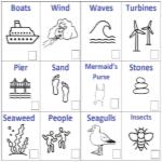 Beach Spotter Sheet